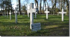 20141008 Graven Belgische vluchtelingen WOI